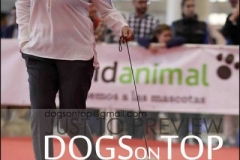 helena de goi ametz en dogs on top